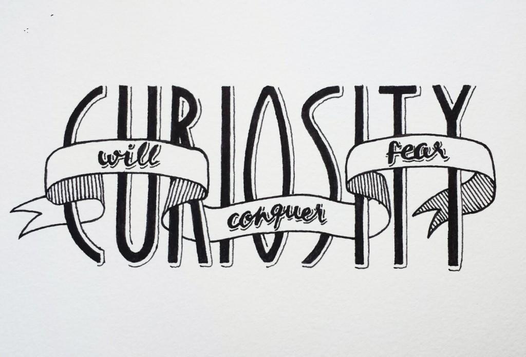 curiosity copy - copie